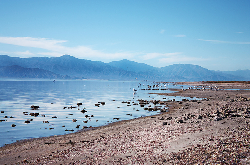 Image of Salton Sea Landscape