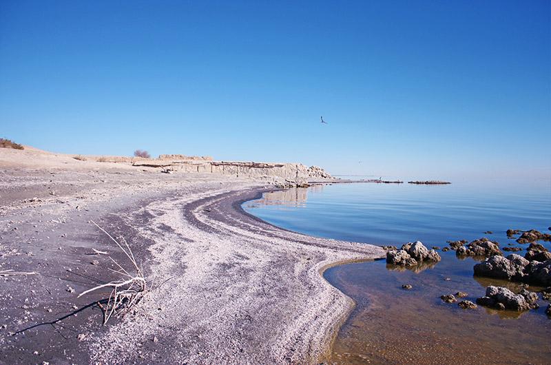 Image of the beach at Salton Sea