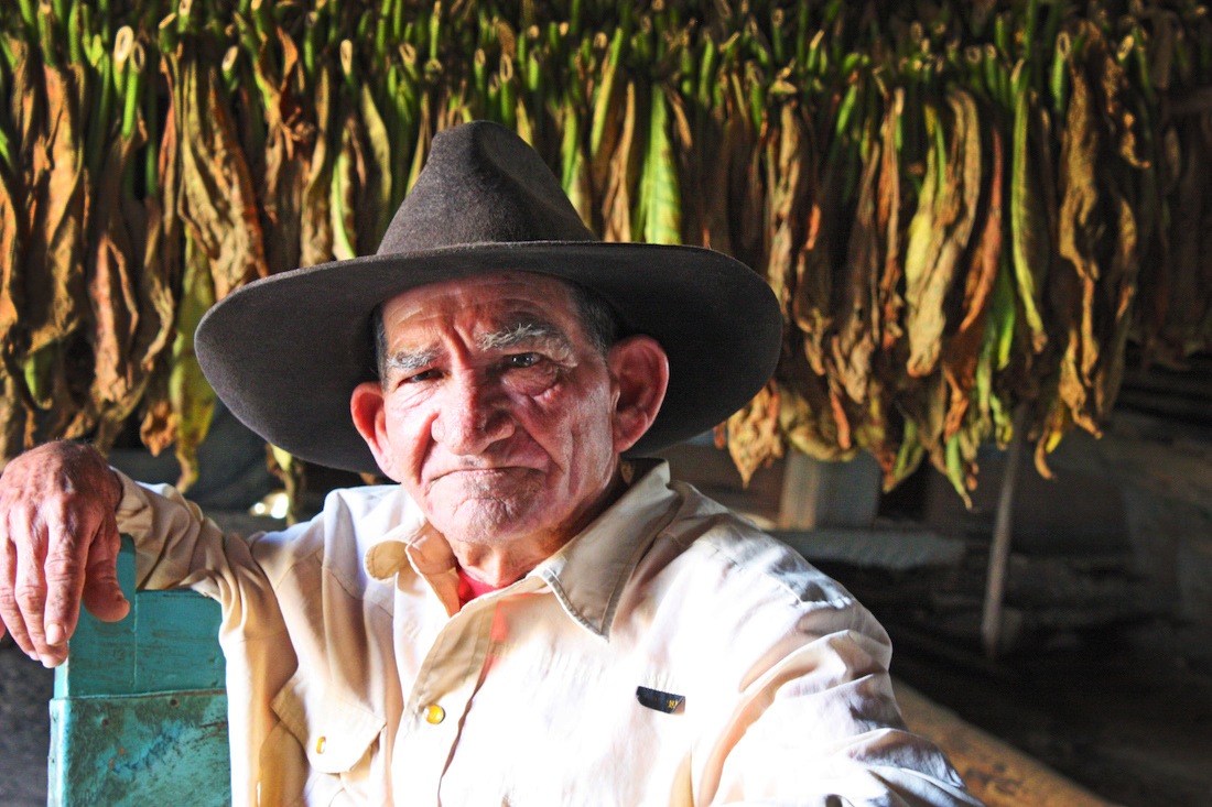 Cigar Roller in Viñales, Cuba