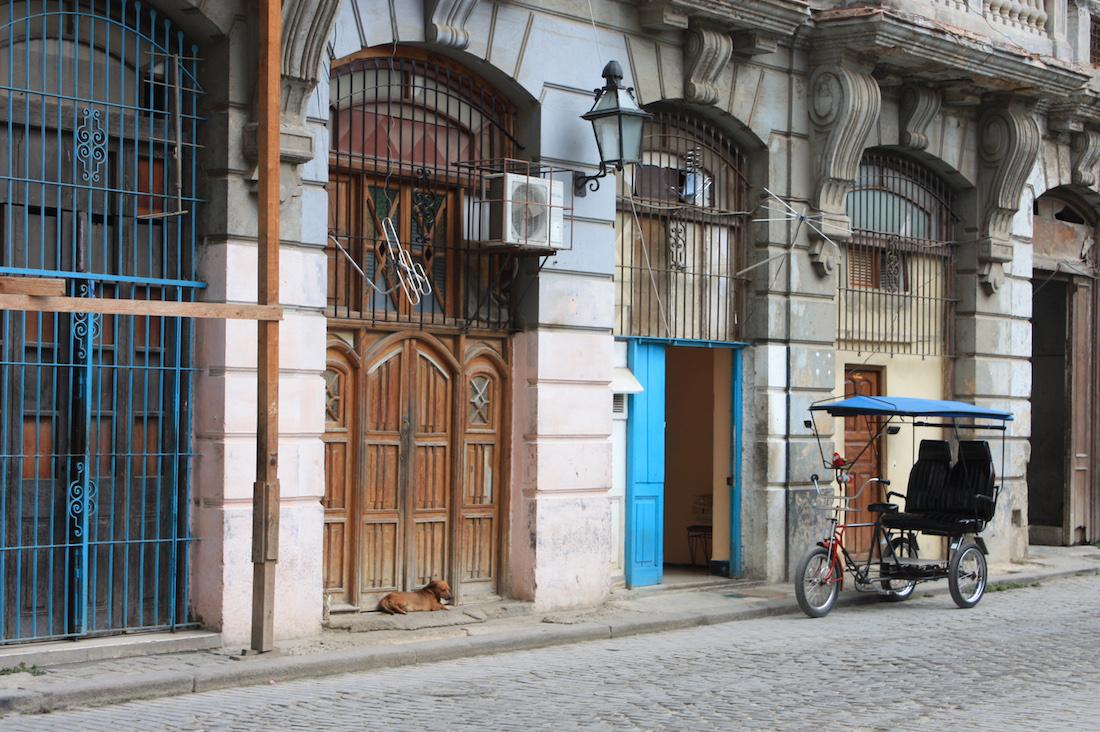 Bicycle and Dog Havana Cuba