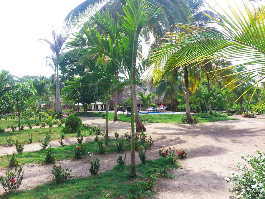 Palomino Colombia Dreamer Hostel