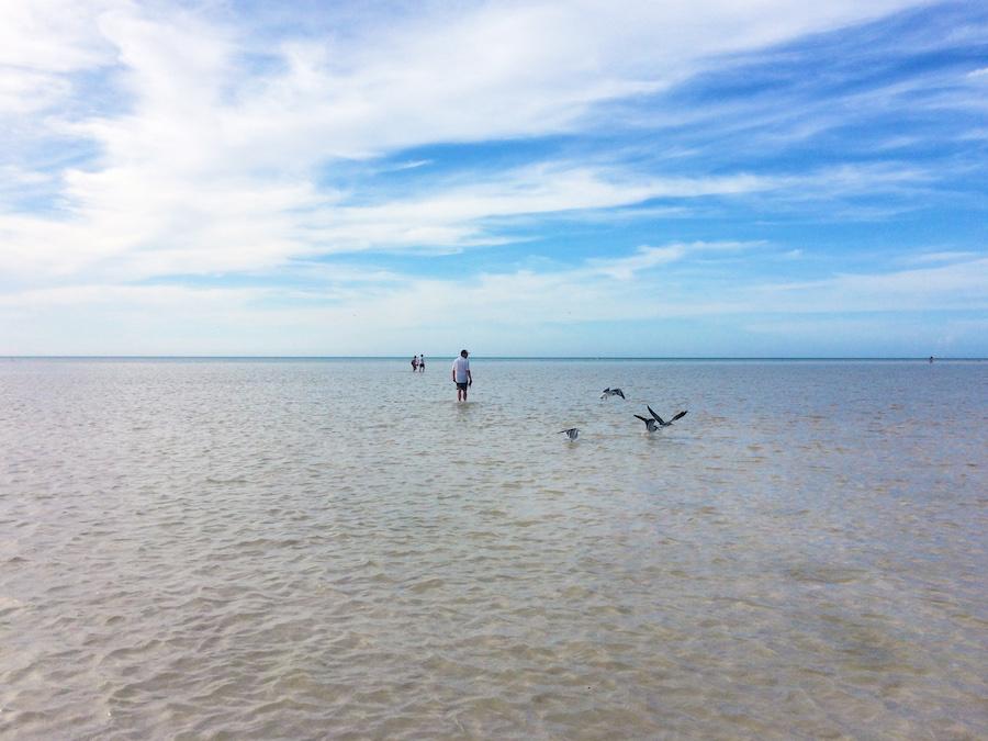 Holbox Island Sandbar