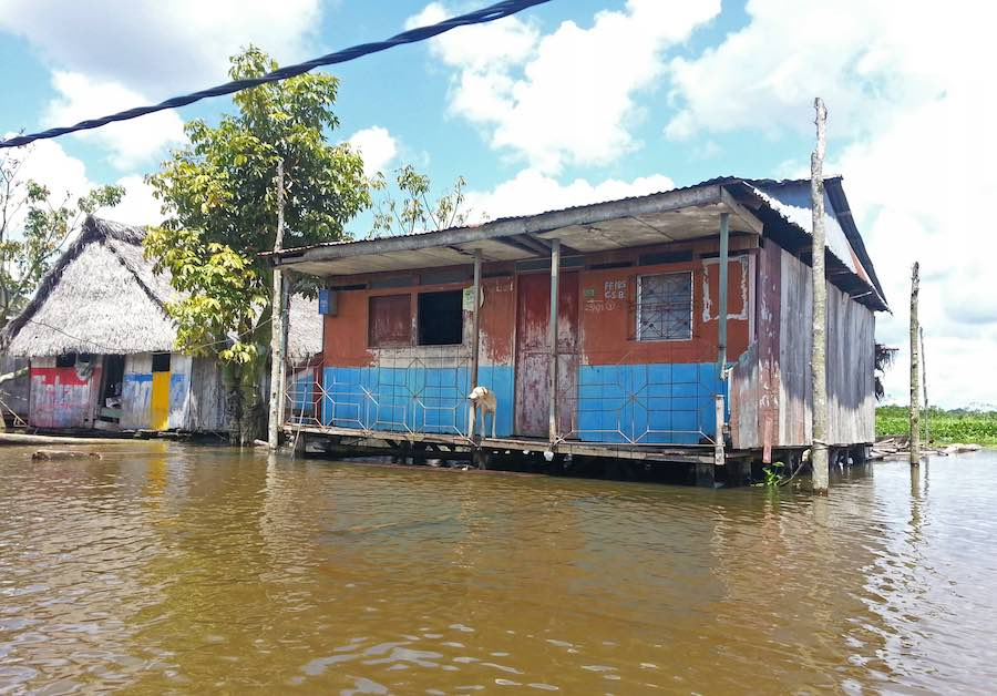 Iquitos Peru Floating Home With Dog