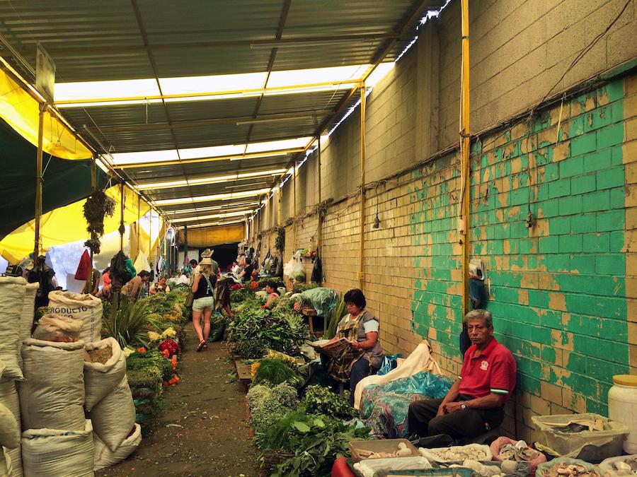 Mercado de Sonora - Witches Market